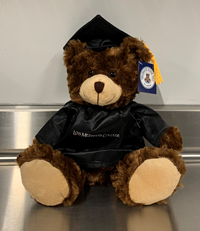 Graduation Bear - Brown